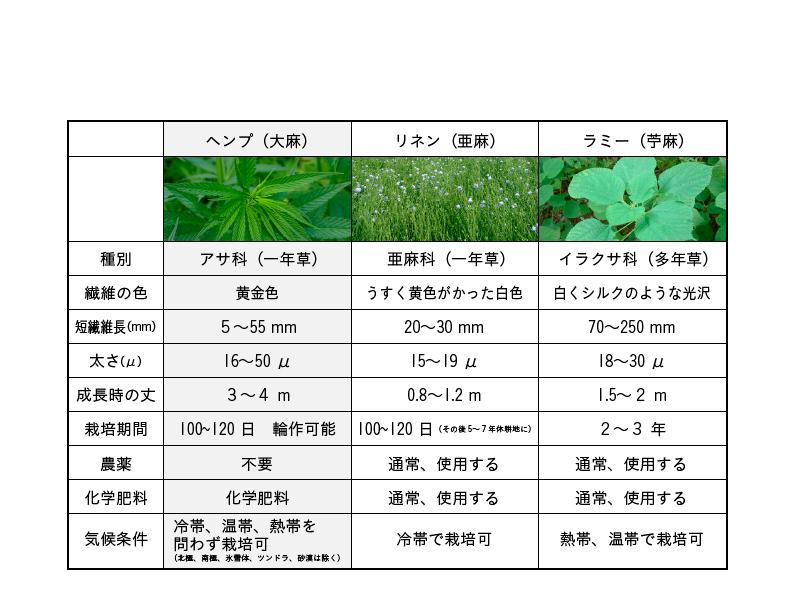 麻の種類を比較
