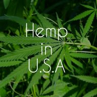 hemp_in_america